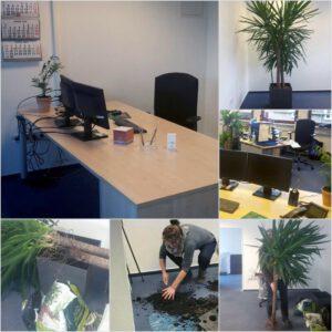Foto zeigt in mehreren Schritten den Aufbau und die Gestaltung eines neuen Arbeitsplatzes